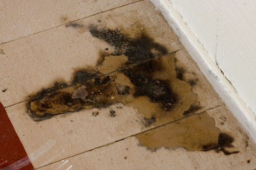 Burned paint below a bulletin board which was set on fire at Ka'u High School sometime Sunday night.