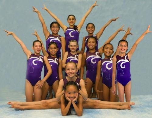 The Kona Aerials gymnastics team 2008