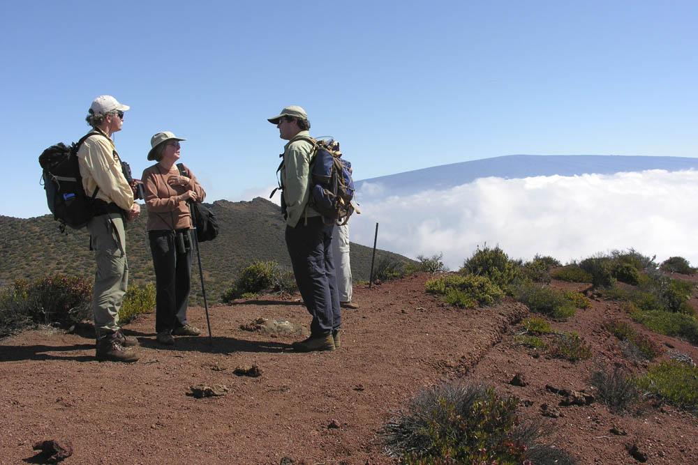 Hawaii Volcanoes Institute offers Hualalai trek