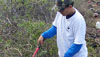 Volunteers clear historic Ala Loa trail in Hookena