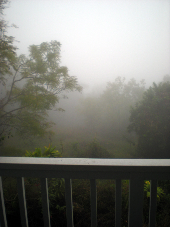 The mist and rain made a usually sunny, green view rather dreary. (Hawaii247.com photo by Marian Stanton)