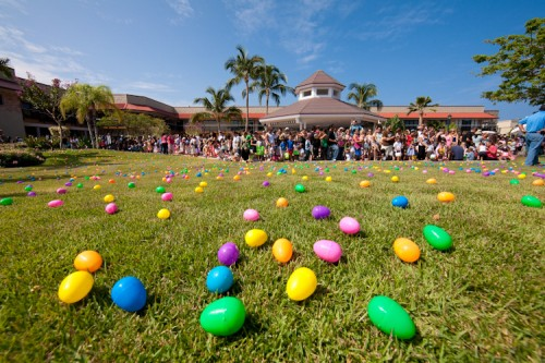 QUEENS MARKETPLACE / MICHAEL DARDEN PHOTOGRAPHY  Hundreds of colorful Easter eggs cover the lawn at the Queens' MarketPlace minutes before the Great Waikoloa Easter Egg Hunt at Waikoloa Resort Saturday.  Hundreds of colorful Easter eggs cover the lawn at the Queens' MarketPlace minutes before the Great Waikoloa Easter Egg Hunt at Waikoloa Resort Saturday.