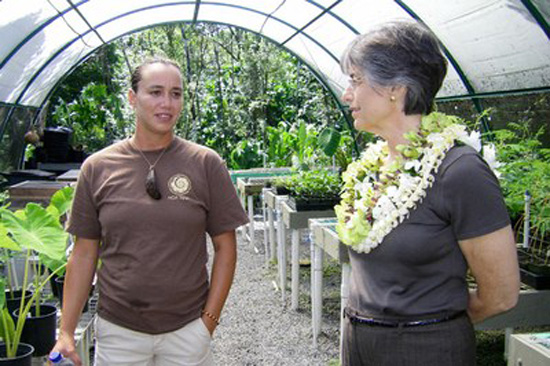 Governor focuses on Big Island, state economy