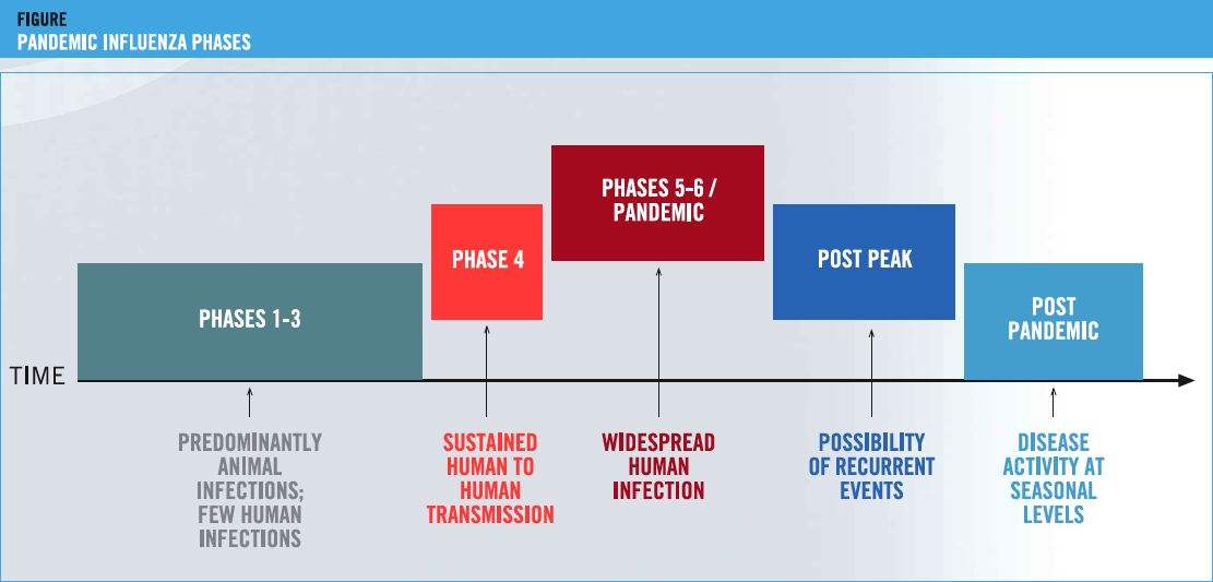 Pandemic level phase 6 represents the spread of the novel H1N1 influenza virus worldwide and not the severity of the illness. Click on image above to read more.