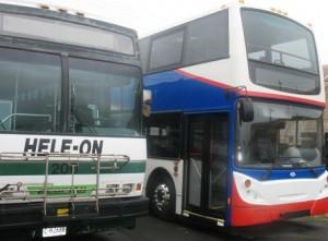 buses 005