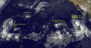 GOES-11 captured four tropical areas on Aug. 12 at 8 a.m. EDT, from left to right: Trop. Depression Maka, Felicia, now a low pressure area, Tropical Depression 9E, and a developing low near Mexico. Credit: NASA/GOES Project
