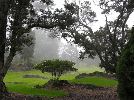 Ainahou Ranch House and Gardens (Photo courtesy of Lanaya Deily)