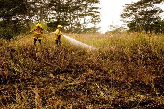 Crews put down hotspots  at a brushfire in Hawaii Beaches subdivision near Lalakea Street.