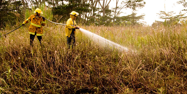 Firefighters put down hotspots of a brushfire in Hawaiian Beaches subdivision Saturday afternoon.