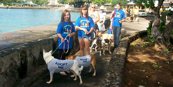 These paws were made for walking. People and pets took it to the streets in Kailua-Kona for the annual Pet Walk fund raiser for the Hawaii Island Humane Society.