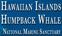 2012 Sanctuary Ocean count (Jan. 28)