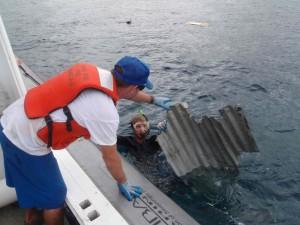 tsunamimarinedebris2