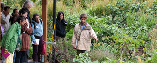 Permaculture design certification course (Jan. 15-21)
