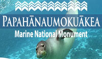 Coral bleaching update for Papahanaumokuakea Marine National Monument