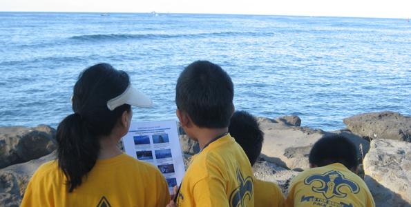 Register now for Sanctuary Ocean Count (Feb. 26)