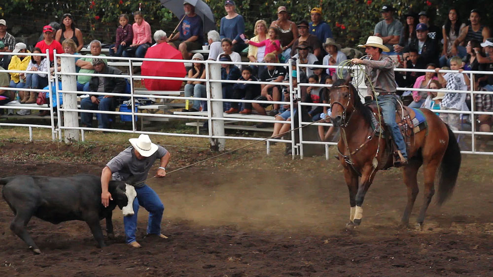 The Naalehu Independence Day Rodeo Saturday (July 2). Crowds, cowboys and cowgirls enjoyed the action at the Naalehu rodeo arena.