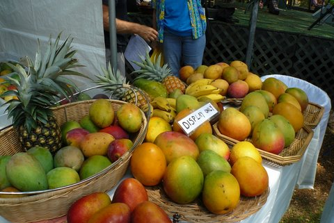 Photos from the 3rd Annual Mango Festival at the Keauhou Beach Resort Saturday (July 30).