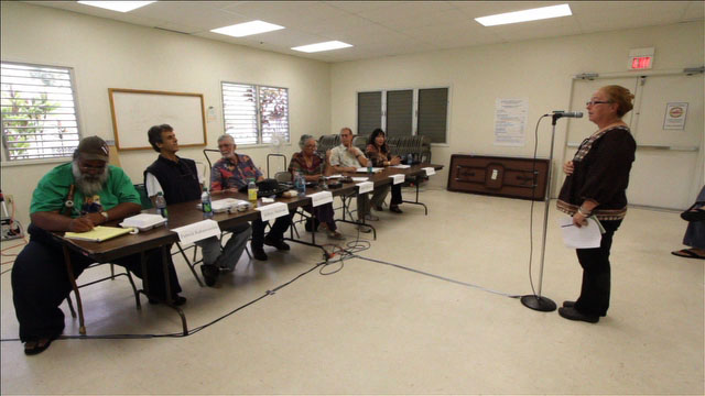 Many testify in favor of a revised Plan 40 redistricting map during a public hearing held at the Keaau Community Center.