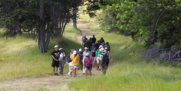 "The Friends of Hawai'i Volcanoes Park (FHVNP) hosts its next ""Sunday Walk in the Park"" on November 13. The Palm Trail is a 2.6 mile loop through scenic pasture, along an ancient cinder cone, with some of the best panoramic views Kahuku has to offer."