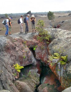 The Friends of Hawai€˜i Volcanoes National Park hosts its next 'Sunday Walk in the Park'€ on Sunday (Feb 12) from noon to 2 p.m.  This month's 3-mile round-trip walk explores the Mauna Ulu area, which is home to dramatic volcanic features such as this 1969 fissure. Photo by: NPS/Jay Robinson