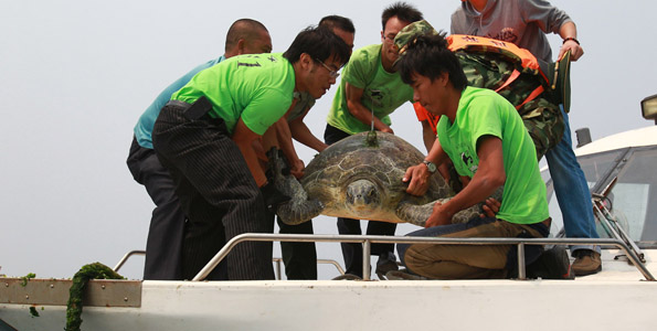 NOAA's Hawaii branch supports group that protects endangered species in South China Sea