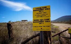 Kaohe Game Management Area, Mauna Kea Game Management Area. Hawaii 24/7 File Photo