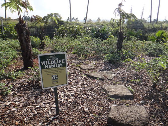 The National Wildlife Federation certification sign now sits proudly in the main garden area at Hawaii Wildlife Center. (Photo courtesy of Hawaii Wildlife Center)
