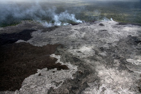 A close-up of the Kahaualeʻa II flow burning vegetation at the forest line, just north of Puʻu ʻŌʻō. The flow consists of numerous slow-moving pāhoehoe lobes. Photo taken on Tuesday (June 11). Photo courtesy of USGS/HVO