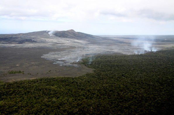 This photo looks south towards Puʻu ʻŌʻō, where a vent is supplying lava to the Kahaualeʻa II flow, north of the cone on Tuesday (June 11). This slow-moving flow has reached the forest line, producing small scattered brush fires. Photo courtesy of USGS/HVO