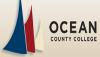 OCCBug