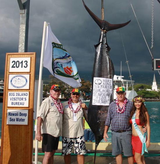At a svelte 428 pounds, the Pacific blue marlin weighed in by Port Vila Sport Fishing Club of Vanuatu (Team #14) at Wednesday's Hawaiian International Billfish Tournament. (Photo courtesy of HIBT)