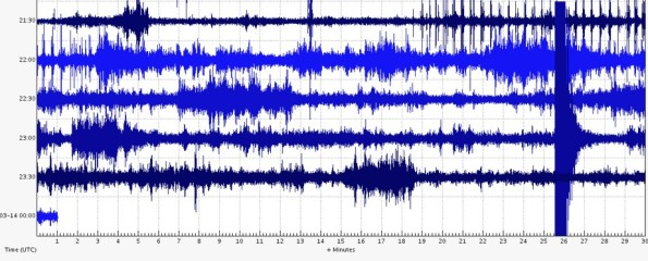 A USGS seismograph in the Waikoloa area captured the jolt of the 3.5 magnitude temblor on the right side of this image.
