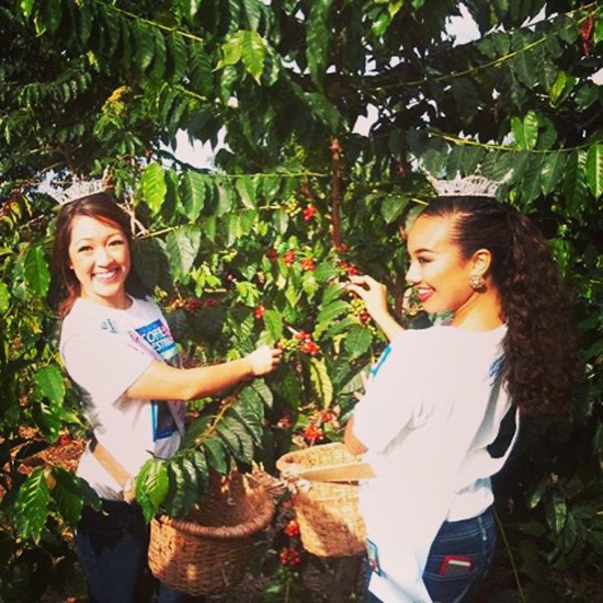 Alyssa Ishihara and Jeanne Kapela at the Kona Coffee Cultural Festival Picking Contest in November 2013. (Photo special to Hawaii 24/7)
