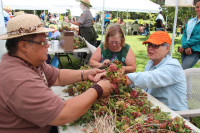 Making lei at last year's Hawaiian Cultural Festival. NPS Photo by Jay Robinson