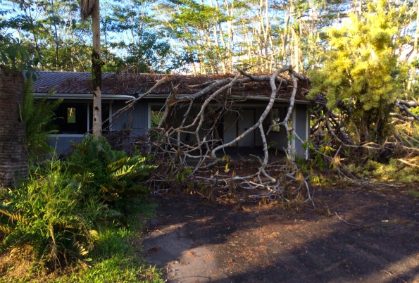 A home in Hawaiian Paradise Park damaged from a fallen tree during Tropical Storm Iselle. Hawaii 24/7 File Photo