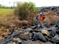 A methane explosion in the ground adjacent to the flow margin threw these blocks of older lava, some up to half a meter (yard) in diameter, a distance of several meters (yards) onto the flow surface. Just to the left of the geologists is a crater of disrupted ground, with overturned blocks of older lava up to a meter (yard) in size. Methane explosions are a hazard in the immediate vicinity of the flow margin. Photo taken Saturday, November 1, 2014. More about methane bursts can be found at http://hvo.wr.usgs.gov/volcanowatch/archive/2002/02_10_17.html. Photo courtesy of USGS/HVO