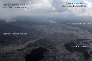 Breakouts are active in three general areas near Puʻu ʻŌʻō: at the northern base of Puʻu ʻŌʻō, north Kahaualeʻa, and about 6 km (4 mi) northeast of Puʻu ʻŌʻō. The distal breakout and the breakout north of Kahaualeʻa are both burning forest. There is no eruptive activity downslope from the distal breakout (nothing active near Pāhoa). Photo taken Tuesday, March 24, 2015 courtesy of USGS/HVO