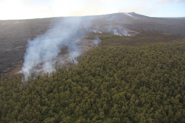 The November 25, 2015, breakout that began as a rupture from the tube supplying the June 27th lava flow advanced slowly to the northeast of Pu'u 'Ō'ō (background) and reached the forest in mid-December, but still poses no immediate threat to Puna communities. USGS image.