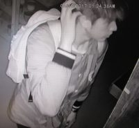Surveillance image of burglary suspect