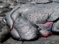 A close up of one of the typical pāhoehoe toes. Photo taken Saturday, May 27, 2017 courtesy of USGS/HVO