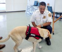 Arson dog Kaimi with his handler, Bobby Perreira of Hawaii County Fire Department. Courtesy Photo.