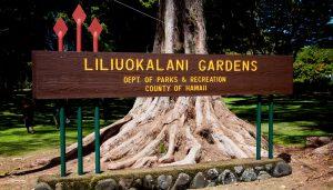 Liliuokalani Gardens in Hilo. Hawaii 24/7 File Photo