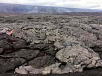 On Kīlauea Volcano's 61g coastal flow field today (October 26), the closest active surface flows mapped by HVO geologists were approximately 1.4 km (0.9 miles) from the emergency road. Breakouts at the flow front were mostly sluggish and spread out pāhoehoe toes; a few larger breakouts were short-lived. Other areas of surface breakouts were also found farther upslope, produced by the June 26 breakout, visibly degassing to the right of the green kipuka on the pali. Photo taken Thursday, October 26, 2017 courtesy of USGS/HVO