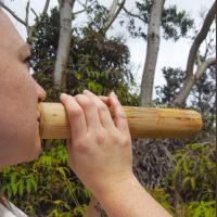 Pū'ohe (Hawaiian Bamboo Trumpet) Demonstration.