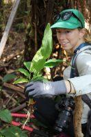 Volunteer removes invasive Himalayan ginger
