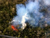 At 12:20 a.m. HST, fissure 12 (shown here) opened shortly after fissure 11 became inactive. Fissure 12 opened in the forest south of Malama Street in Leilani Estates. Photo taken Monday, May 7, 2018 courtesy of U.S. Geological Survey