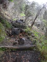 Boulders blocking Byrons ledge at Kilauea Iki Trail. NPS Photo