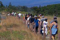 Visitors walk along the 'Iliahi Trail along the rim of Kilauea Caldera. Photography by Baron Sekiya | Hawaii 24/7