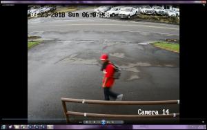 Surveillance Image. Keaukaha auto theft suspect.