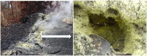 Continued degassing from fumaroles at fissures on Kīlauea Volcano's lower East Rift Zone produce native sulfur crystals when sulfur dioxide and hydrogen sulfide gases react and cool upon reaching the surface. The delicate sulfur crystals are 5-15 mm (0.2-0.6 in) long. USGS photos by A. Lerner, 2018.